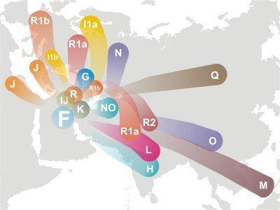 Haplogroupe_F_